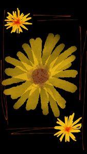 Flower - Ika ibrahim