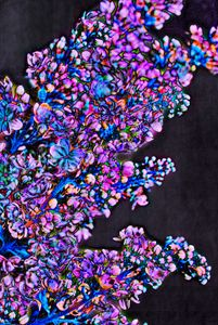 Abstract lilac