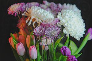 Flowers 202