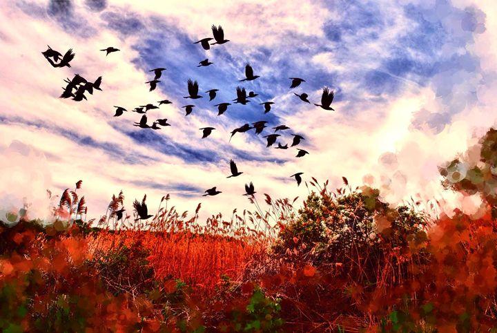 Birds Over a Field - Artofmine