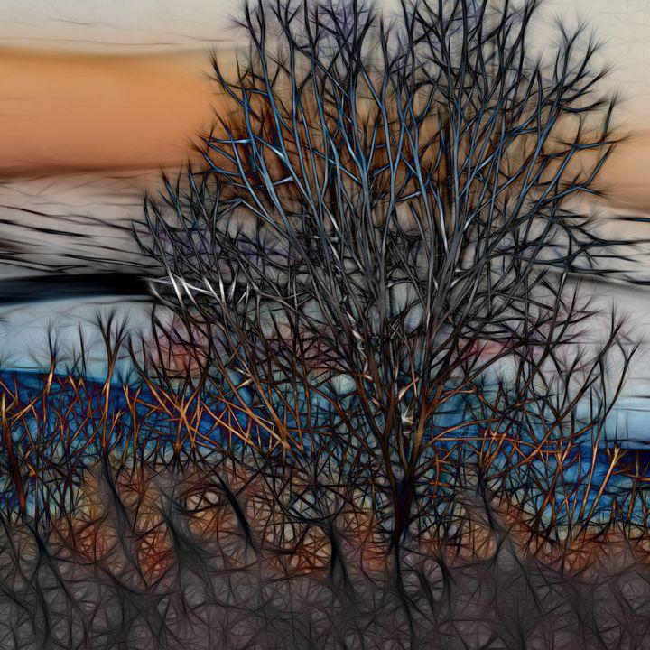 Sunset Tree - Artofmine