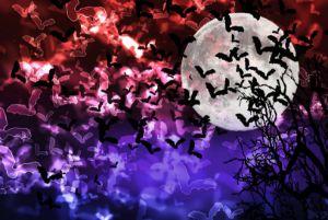 Bokeh Light Bats