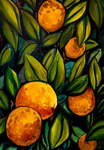 Oranges from the Tree