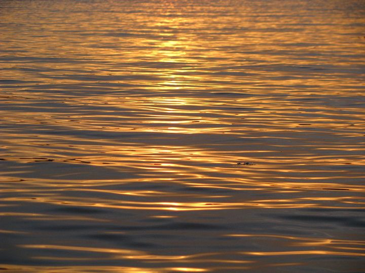 water reflection - Yvonne Poirier Island Earth Photography