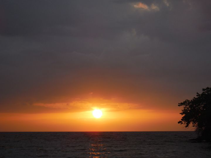 Jamaica Beauty in the eve of the day - Yvonne Poirier Island Earth Photography