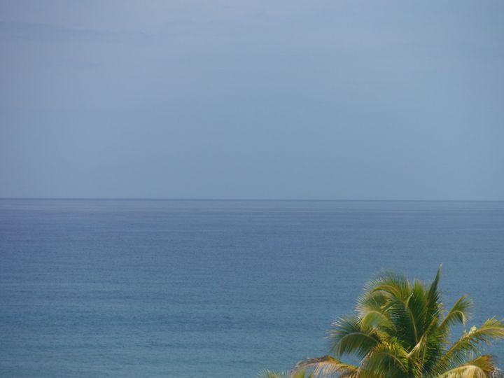Ocean and Palm - Yvonne Poirier Island Earth Photography