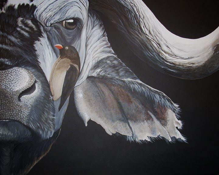 cape buffalo - gallery zoombeeart