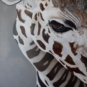 giraffe eye - gallery zoombeeart