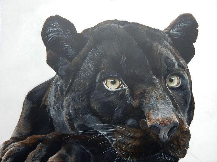 black jaguar - gallery zoombeeart