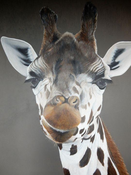 giraffe - gallery zoombeeart