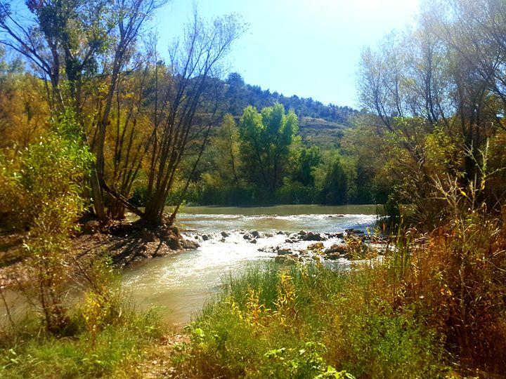 Sedona's Verde River - SockFeetStudio