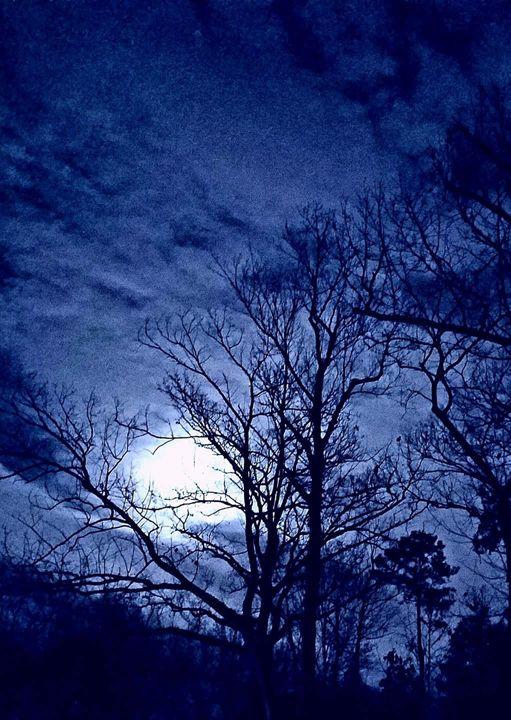 Blue Night - SockFeetStudio