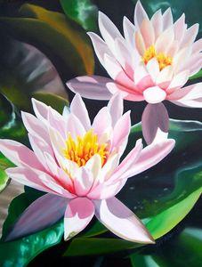 Water Lilies - ART-DFrancis