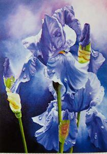 Irises In The Rain - ART-DFrancis