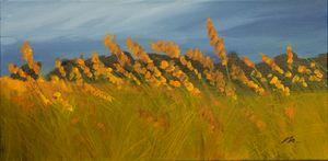 Lank Grasses Swirled