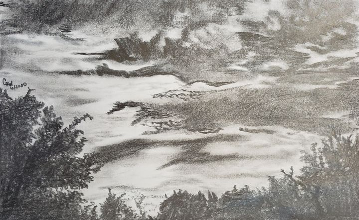 sky view in black and white - Gina Wiener Designs