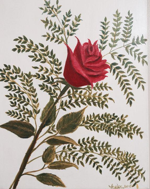 A Rose - Helen's Art Gallery
