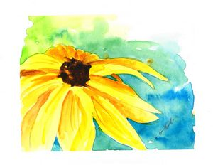 Black Eyed Susan (3)