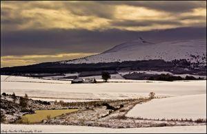 Snowy Bennachie