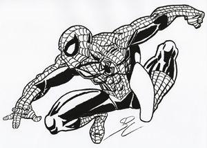 Hand Drawn Spider-Man