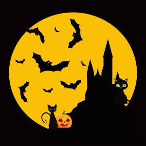 Cat and Halloween