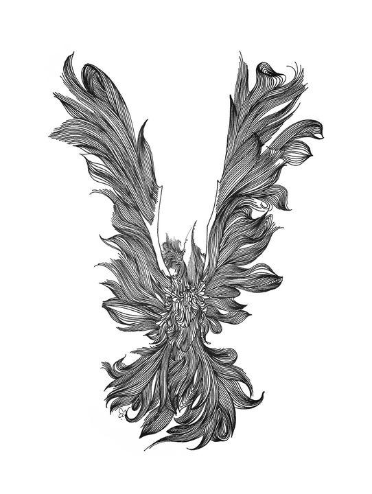 Phoenix - Ali Morshedlou