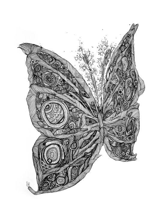 Butterfly - Ali Morshedlou