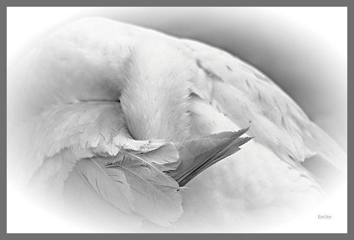 Intimity, limited edition - Em'Art - Emmanuelle Baudry