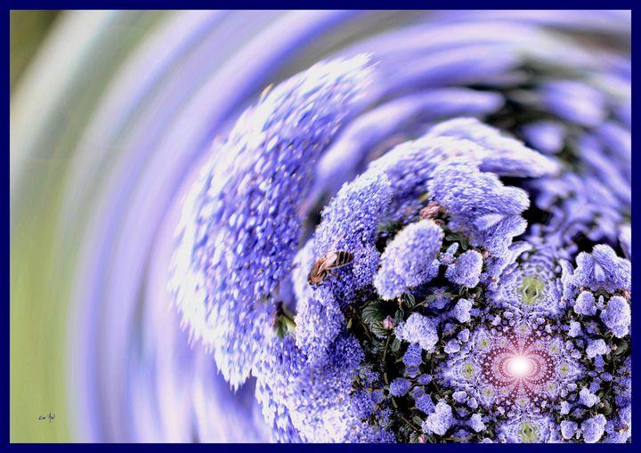 Fractal Flowers, by Em'Art - Em'Art - Emmanuelle Baudry