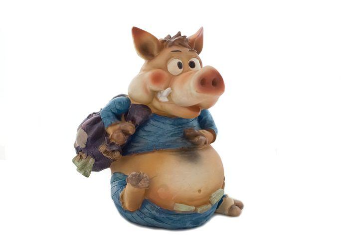 funny pig - Aleksei lomanov