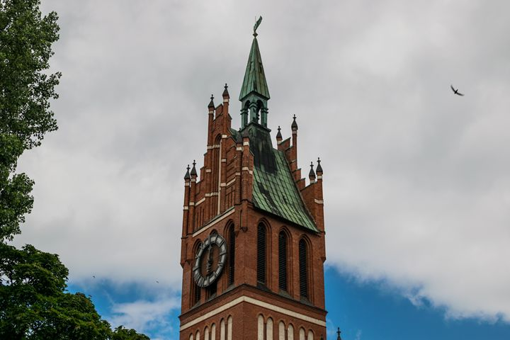an old clock tower in the Gothic sty - Aleksei lomanov