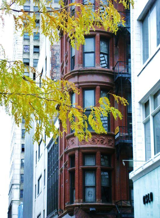 Downtown - Dreamer's Shutter Photography :: Amanda Gloth