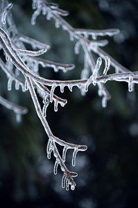 Ice Mutiny