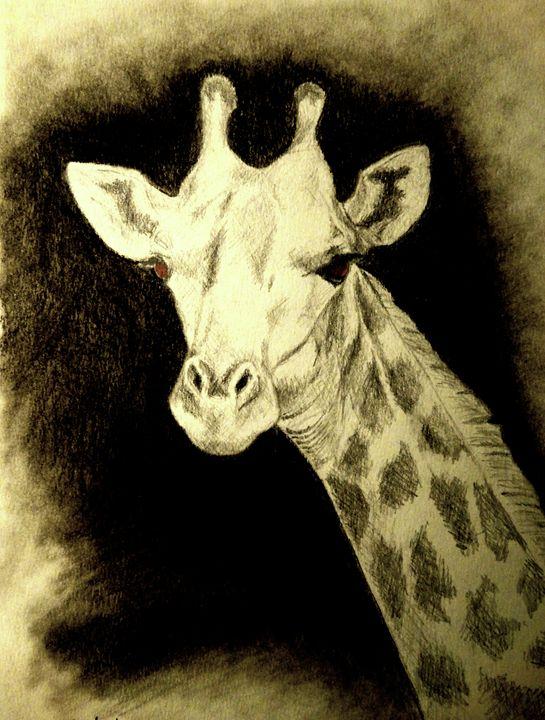 Giraffe - Wildlife on Paper