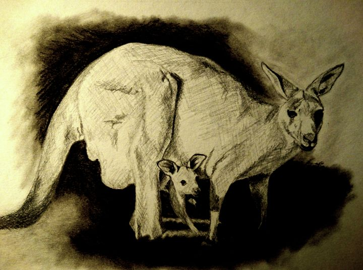 Kangaroo with her baby - Wildlife on Paper