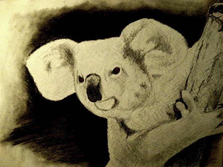 Koala - Wildlife on Paper