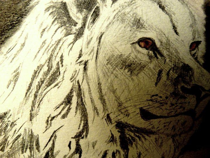 Lion-King - Wildlife on Paper