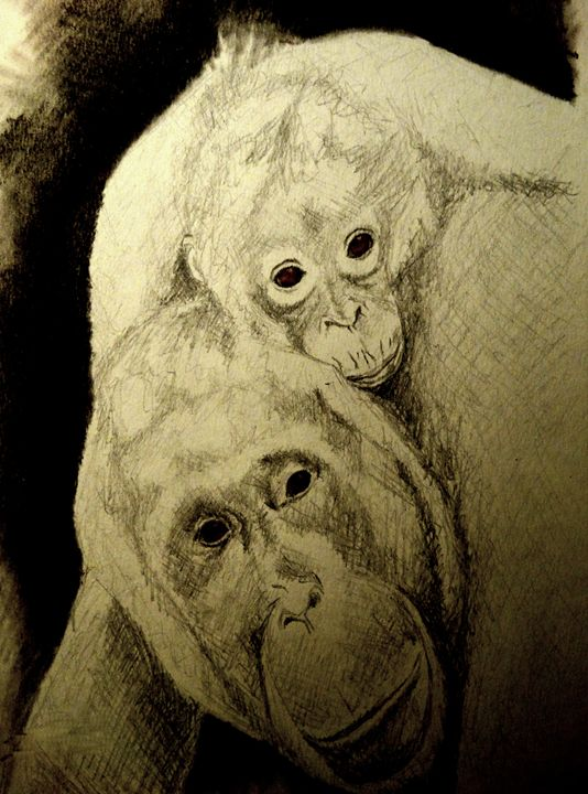 Orangutan with her baby - Wildlife on Paper