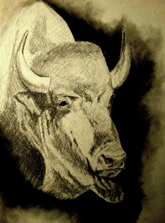 Bison - Wildlife on Paper