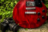 Randy Shand Photography