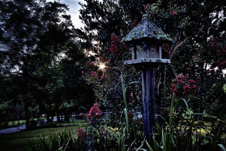 In the Garden - Travis Baars Photography