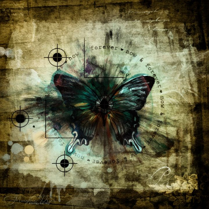 Eye of a Butterfly - The Art Inspires
