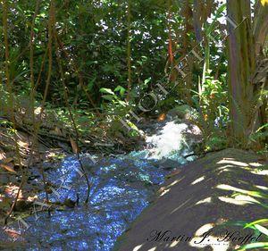 Alien water fall