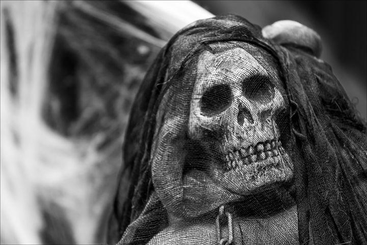 Halloween Skull - Robert Daniel Ullmann Fine Art Photography