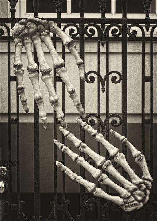Skeletal Hands - Robert Daniel Ullmann Fine Art Photography