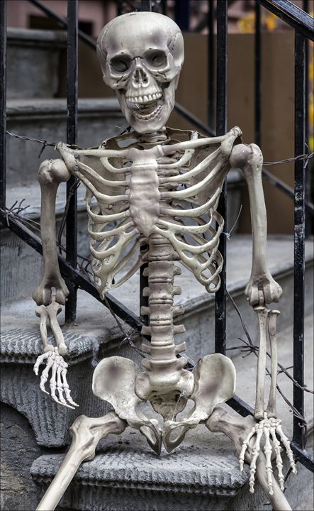 Skeleton on the Steps - Robert Daniel Ullmann Fine Art Photography