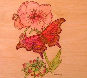drunkin butterfly