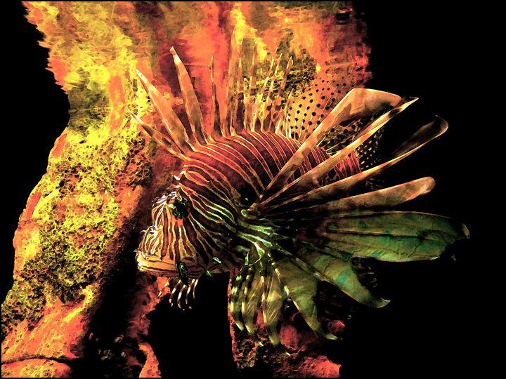 Lion Fish PhotoArt - PhotoArt By Darla