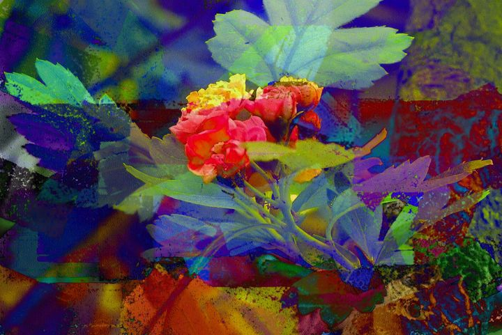 Flowers and Foliage PhotoArt - PhotoArt By Darla
