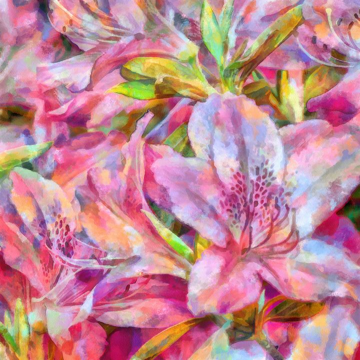 Azalea Flowers PhotoArt - PhotoArt By Darla